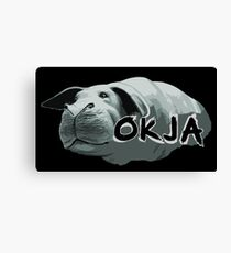 Okja Movie Canvas Print