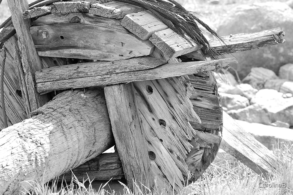 Old Wheel by CarolineB