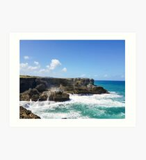 North Point Barbados Art Print