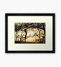 Last Sunset of 2014 Framed Print