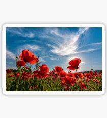 poppy flowers field in mountains Sticker