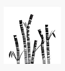 Watercolor Ink Bamboo Photographic Print