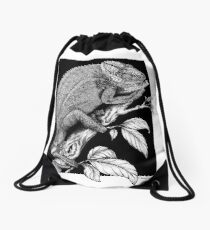 Chameleon On Black Background Drawstring Bag