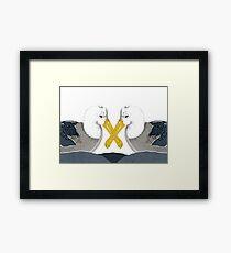 Albatross in Love Framed Print
