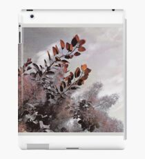 Below the sky iPad Case/Skin