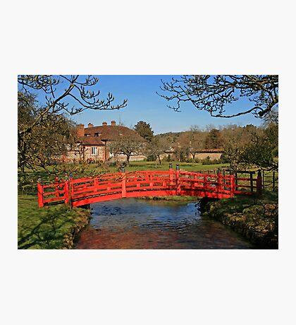 Red Bridge, Heale Gardens Photographic Print