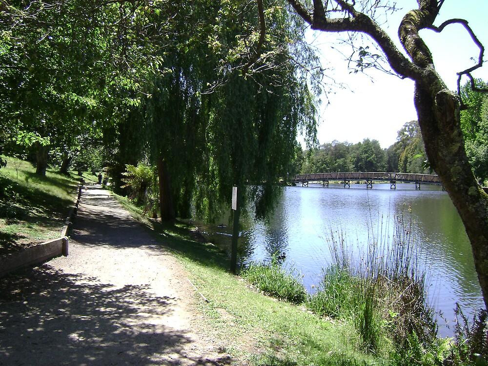 The path along Emerald Lake by VENUSC1