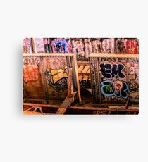 Charles river Graffiti  Canvas Print