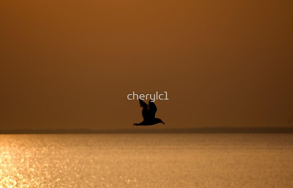 Golden Beginnings by cherylc1
