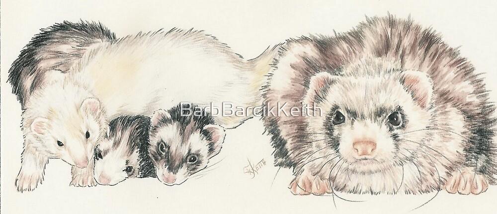 Ferret Clan by BarbBarcikKeith
