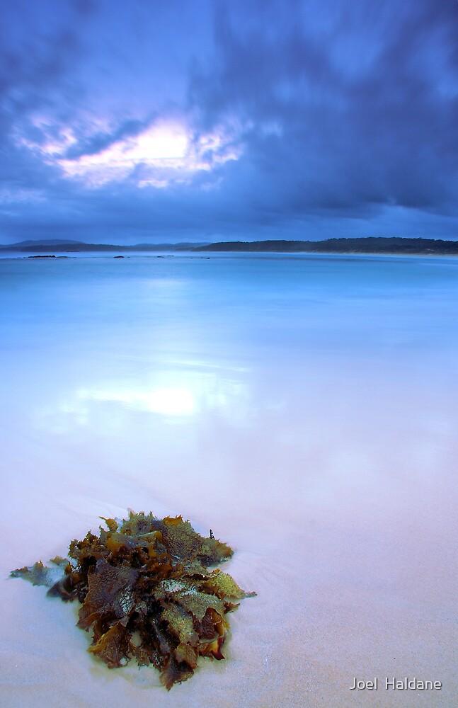 Blue Sunset by Joel  Haldane