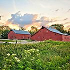 Dual Barns in Chickasaw by Duane Sr