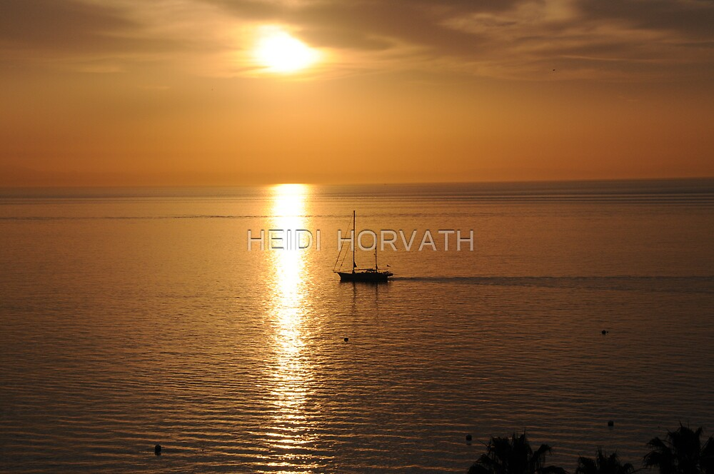 Towards the SUN by HEIDI  HORVATH