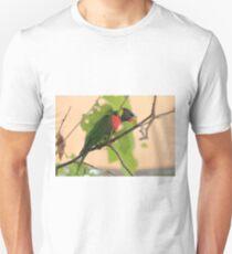 Rainbow Lorikeet T-Shirt
