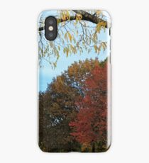 Washington Autumn iPhone Case/Skin