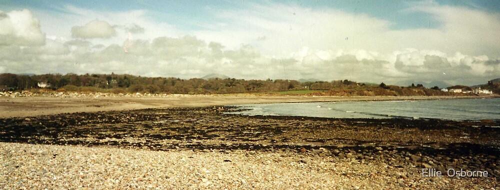 Beach. by Ellie  Osborne