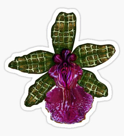 Maia'Pinque Sticker
