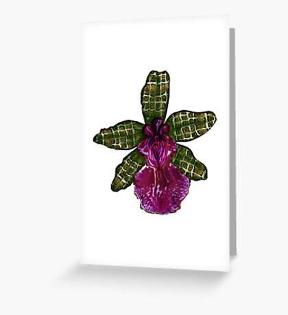 Maia'Pinque Greeting Card
