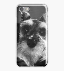 Schnauzer headshot  iPhone Case/Skin