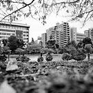 A ducks life - Tokyo Japan by Norman Repacholi