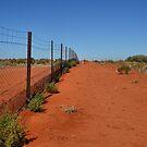 Dingo Fence - Cameron's Corner NSW/Qld/SA Australia by Bev Woodman