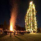 Christmas on Mayne Island II by toby snelgrove  IPA
