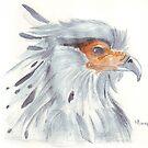 Secretary Bird by Maree Clarkson