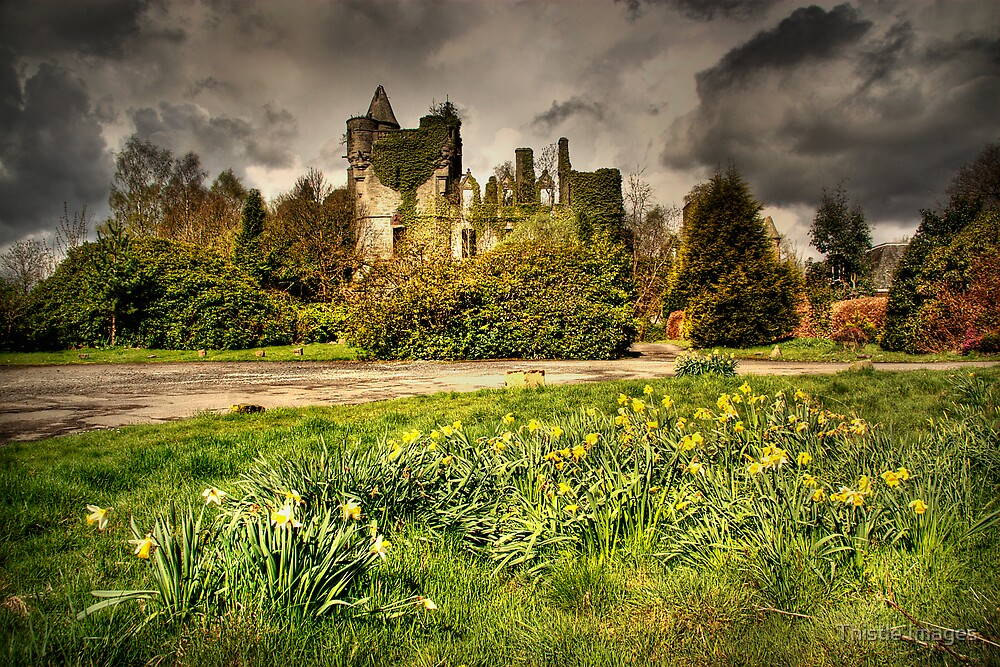 Buchanan Castle, Drymen by Thistle Images