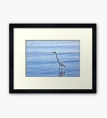Wading In The Blue Framed Print
