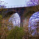 Almondell Viaduct II by Tom Gomez