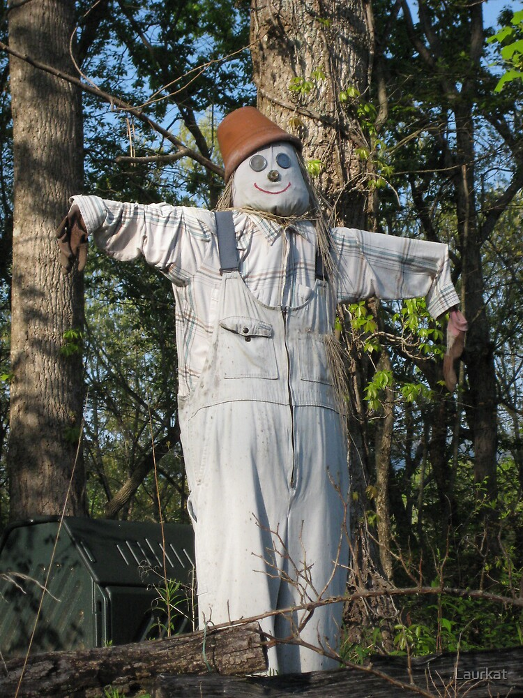 cove road scarecrow in springtime by Laurkat