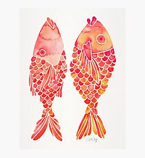Indonesian Fish Duo – Melon Palette Photographic Print