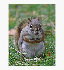 This is my nut Photographic Print