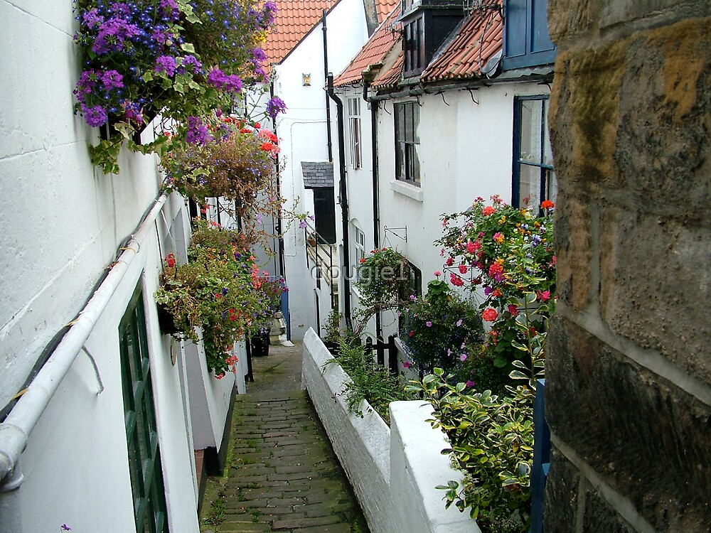 whitby alleyways by dougie1
