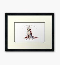 Yankee Terrier Framed Print