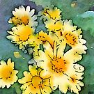 Yellow Daisies Digital Watercolor by Beverly Claire Kaiya