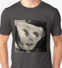Rocky face, Royal National Park,NSW Australia 2012 T-Shirt
