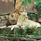 The Royal Couple by Glenna Walker