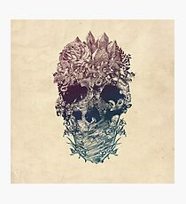 Skull Floral Photographic Print