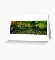 Burnham Beeches Greeting Card