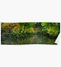 Burnham Beeches Poster