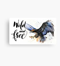 Eagle Wild and Free, watercolor, birds, wildlife Canvas Print