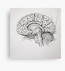 Brain Leinwanddruck