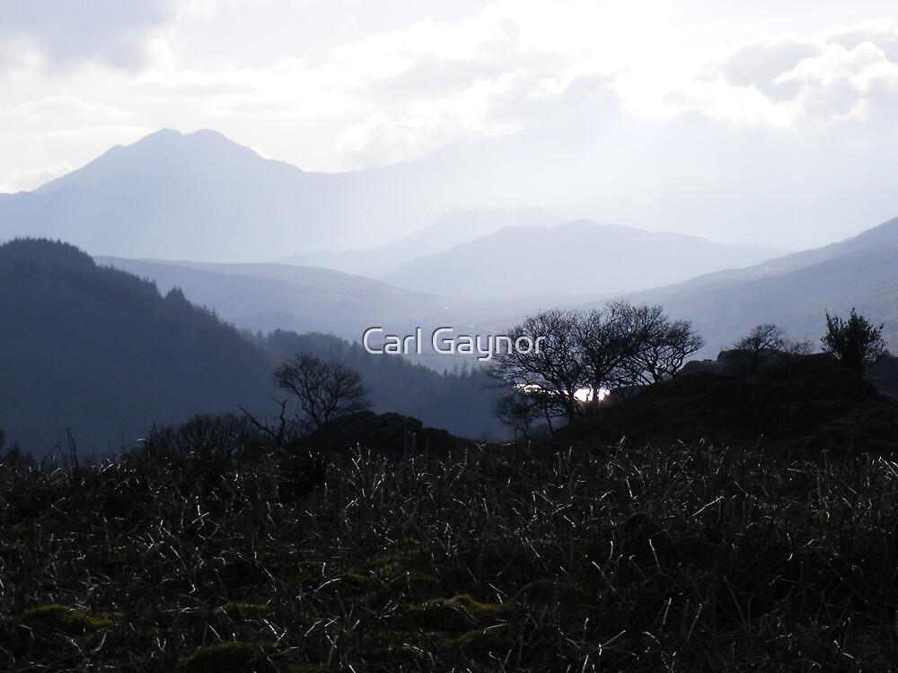 Snowdonia - Frist days of Spring  by Carl Gaynor