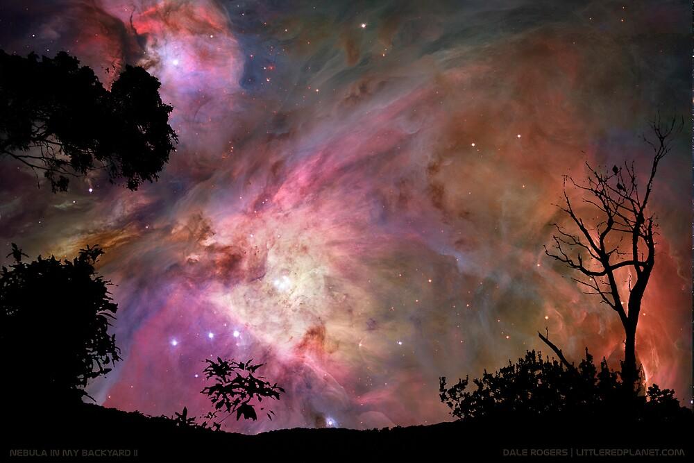 Nebula In My Backyard II by Photo Rangers