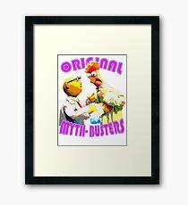 original mythbusters Framed Print