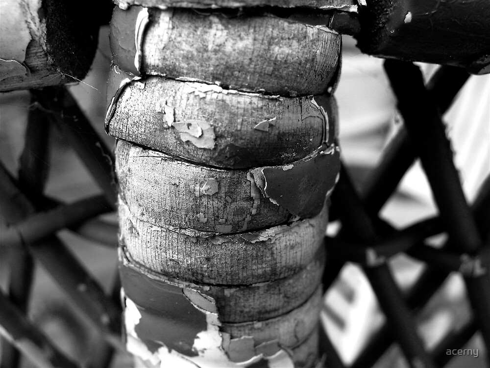 Wicker Spine by acerny