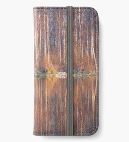 Mirror In The Lake iPhone Wallet