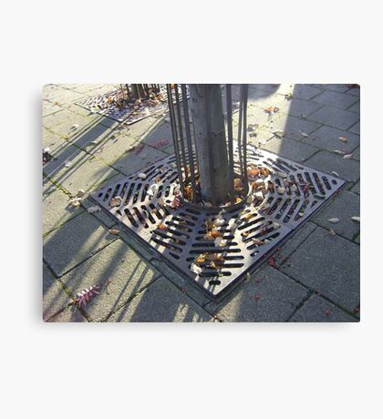 Autumn Carousel (leaves in radial grille, Burntisland) Canvas Print