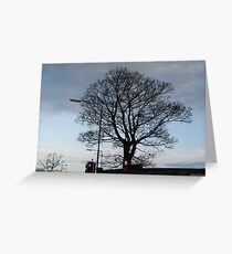 City Tree at Red Light Greeting Card